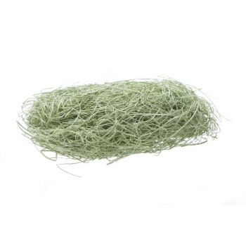 Cosy @ Home Easter Grass Green 50g In Polybag