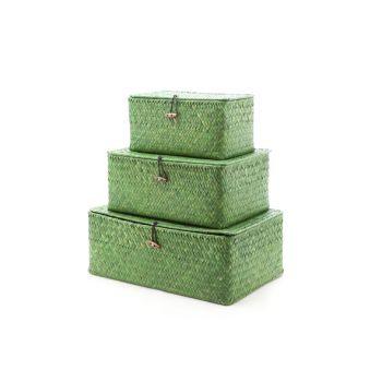 Cosy & Trendy Set3 Seagrass Basket Balk Green