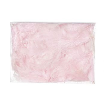 Cosy @ Home Deco Down 5g Pink In Pvc Box