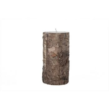 Cosy @ Home Candle Cyl.white Bark Brown D7.5xh15cm