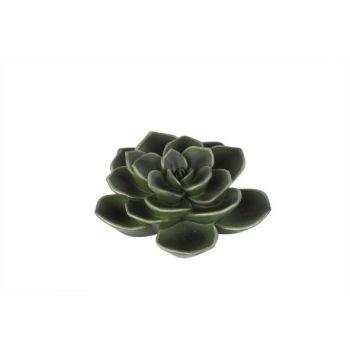 Cosy @ Home Xerophyte Hang Resine Green 15x6x15cm