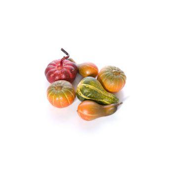 Cosy @ Home Pumpkin Green Synthetic L20 B16 Mix