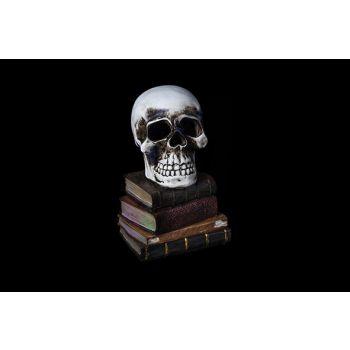 Cosy @ Home Skull Gray Pottery 11x11xh17 Books