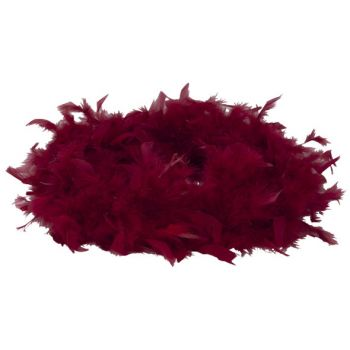Cosy @ Home Feather Boa With Down Frambois 180cm 45g