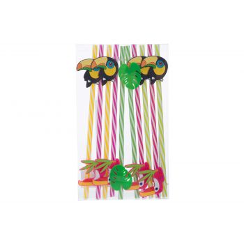 Cosy & Trendy Straw Reusable Toukan Set10