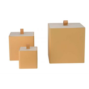 Cosy @ Home Box With Lid Set3  Ochre  25x25xh25cm
