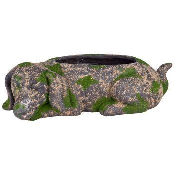 Cosy @ Home Dog Lying Flower Pot Moss 51x26xh16cm Ma