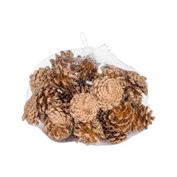 Cosy @ Home Pine Cones 300gr Gold 5x5xh5cm Wood