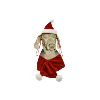 Cosy @ Home Xmas Pet Suit For Dog Hat+scarf