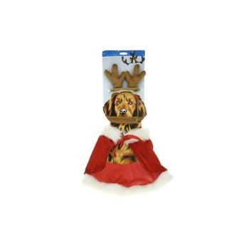 Cosy @ Home Xmas Pet Suit For Dogs Antlers + Cape